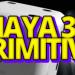 Guida-Maya-3d-primitive-cover-article